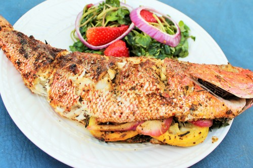 snapper on plate